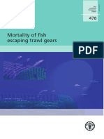 Mortality of Fish Escaping Trawl Gears