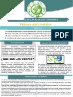 valor ambiental.pdf