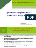 Optimizarea Programului de Productie