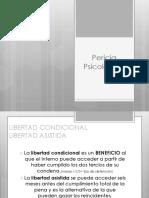 33003318. Lic. Victor Rosa  Pericia Psic.pdf
