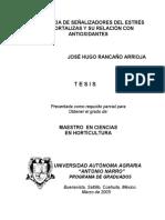 t14798 Jose Hugo Rancaño Tesis