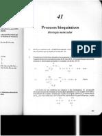 Capítulo 41.pdf