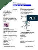 Simulacro-Plus-Medic-a-Agosto.pdf