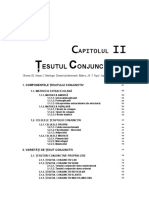 tesut_conjunctiv_caruntu.pdf