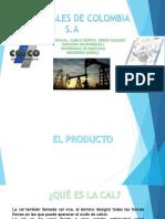 Exposición Cal.pdf