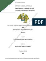 Tesis-protección Jurídica Familiar -Parejas Homoafectivas