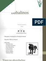 bubalinostrabalho-160407231853