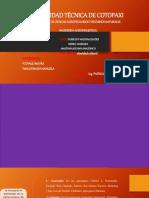 Presentacion Identidad_pueblos y Nacionalidades