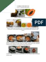 Dokumentasi Marmalade