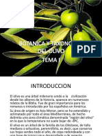 1.- Botanica y Taxonomia Del Olivo