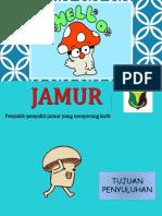 PENYULUHAN JAMUR