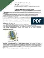 Anatomia y Fisiología CELULAR
