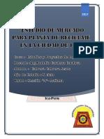 ESTUDIO DE MERCADO ROCHY.docx