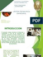 225741497-Ppt-Gaston.pdf