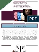 Diapos Psicopatología y Delincuencia