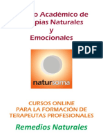 RN - Indice - Remedios.pdf