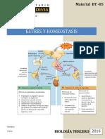 Estres y Homeostasis WEB