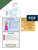 Fluid and Electrolyte Mnemonics