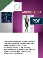 ANDROLOGIA presentacionnnnn
