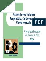 Anatomia Dos Sistemas Respiratorio, Cardiovascular e Cerebrovascular