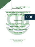 PAMA_JCV.doc