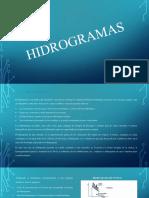 HIDROGRAMAS-EXPOSICION