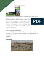 Relaciones Interespecíficas en Un Ecosistema