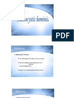 Presentación1blasticystis.pptx