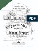 13 Strauss - Unter Donner und Blitz.pdf