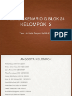 PLENO G 24