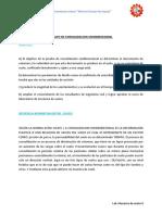 consolidacion-informe