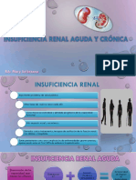 Insufiencia Renal Aguda y Cronica 2017