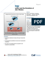 Reproductive Conflict and the Evolution of.pdf