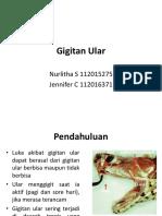 Gigitan Ular (Revisi)
