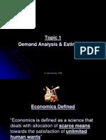 10411_Microeonomics - Demand Analysis & Estimation