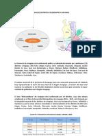 Analisis Distritos Colindantes a Sachaca
