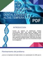 Sistemas de caracterización del ADN de origen dental