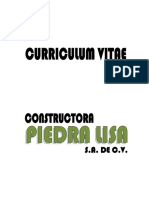 Curriculum Piedra Lisa Actualizado 24 Jul