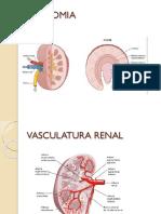 Liquidos Corporales, Filtracion Gomerular y Funcion Tubular