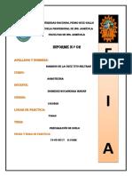 1 Segunda Practica de Agrotecnia Barrios