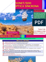 9-5 Jerarquia Digital Sincrona Sdh-1 10309105724-Phpapp02
