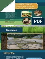 TECNOLOGÍAS-PARA-LA-RECUPERACIÓN-DE-SUELOS-PROFUNDOS-CONTAMINADOS.pptx
