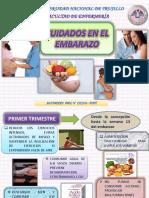 Cuidados en El Embarazo Rotafolio