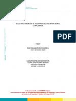 Informe Psicosocial Polco 2015