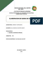 INFORME DE QUESO DE CERDO.docx