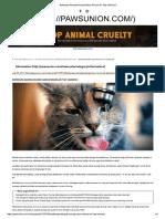 Seberapa Banyak Kucing Harus Minum Air Setiap Hari.pdf