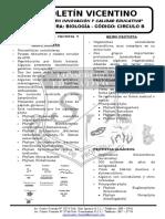 Biología Boletín 16 Circulo b Monera Protis Fungi