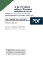Dialnet-AntagonismoDeTrichodermaSpAnteElPatogenoStromatini-5644955
