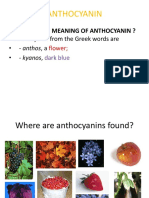 Anthocyanin Power Point