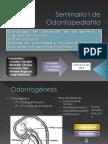 Seminario I de Odontopediatría [Autoguardado]Asdasd